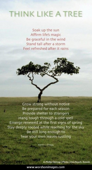 Tree of life quotes