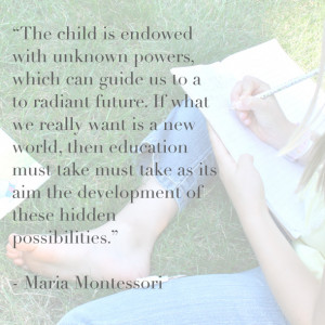 describe what montessori means by a spontaneous observer of nature Montessori is a lifetime adventure that allows children to explore in prepared and natural environments it gives them the opportunity to develop the skills to succeed in life and to find their inner selves.