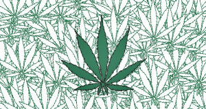 Marijuana Addiction Questions