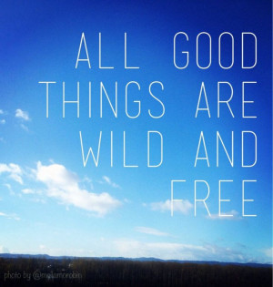 quote by Thoreau. Soooo true!