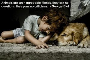 My Favorite Dog Quotes 2