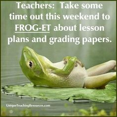 ... weekend to frog et about lesson plans and grading papers more weekend