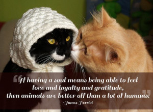 ... love. For me they are the role model for being alive. Gilda Radner