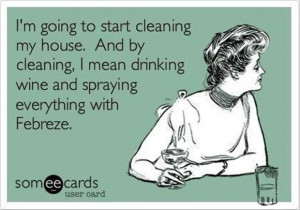 cleaning my house funny quotes