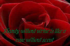 Beauty Without Virtue is Like it Rose Without Scent – Beauty Quote