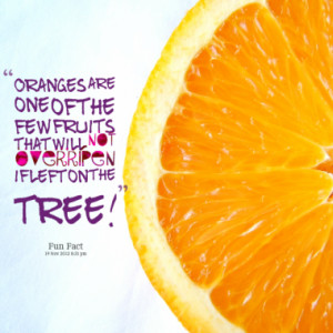 Oranges are one of the few fruits that will not overripen if left on ...