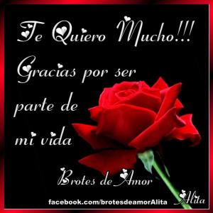 Buenas Noches Te Quiero Mucho Te quiero mucho!