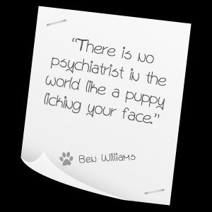 Pet Therapy Quotes