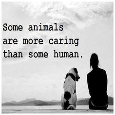 Caring For Animals Quotes