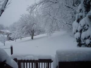 Blizzard Snow Ice Storm