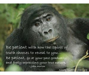 Wisdom/patience