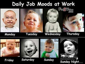 ... funny pictures funny job daily funny cartoon moods job funny pictures