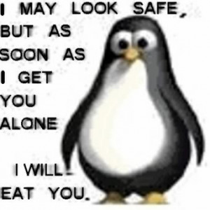penguin funny Captions pic, penguin funny with Captions, funny penguin ...