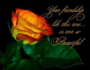 Friendship Rose Greetings