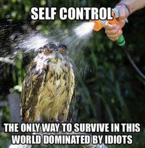 Animal Memes – Self control