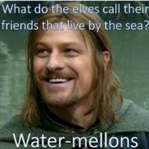 Funny Lotr Quotes