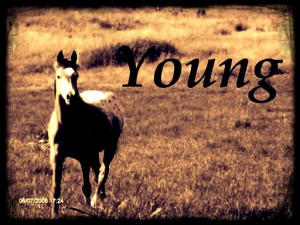 Young photo 1FD01CF2.jpg
