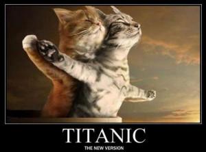 Titanic versión gatitos - gatos chistosos