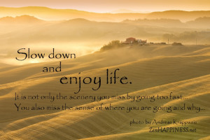 Slow down and enjoy life quotes. It is not only the scenery you miss ...