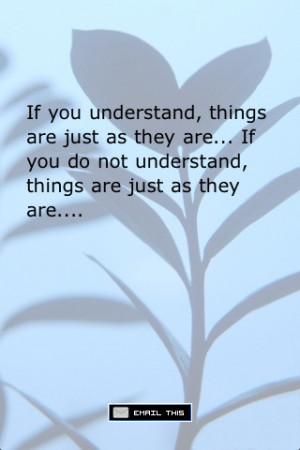 Great Zen Quotes http://appfinder.lisisoft.com/app/zen-quotes-sayings ...