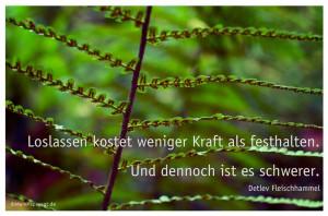 ... deutsch #quotes Weisheiten Zitate TÄGLICH NEU auf www.MeinPapasagt.de