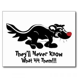 Funny Skunk Photos