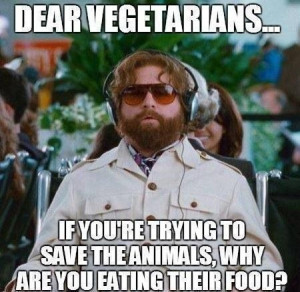 Tell me this vegetarians... Why?