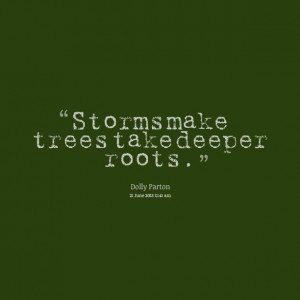 quotes about roots - Google Search