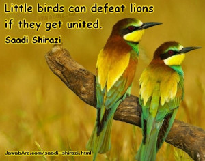 ... can defeat lions if they get united |Saadi shirazi quote about unity