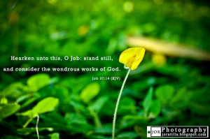 Wondrous works of God Bible Quotes Job 37:14
