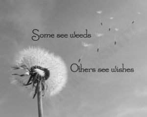 Popular items for dandelion quotes