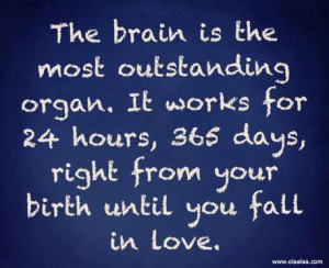 Really Funny Love Quotes