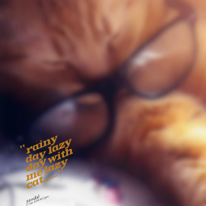 Quotes Picture: rainy day lazy day with me lazy cat