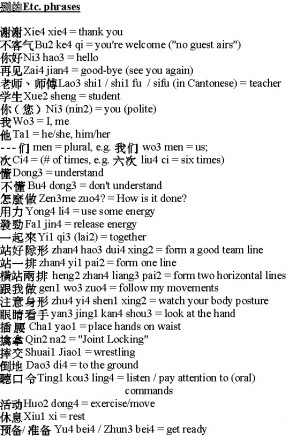 Basics of the Mandarin Dialect of the Chinese Language