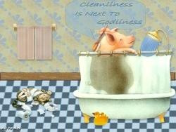 Image detail for -Cleanliness+quotes