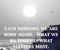 Morning Glory Quotes