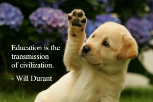 Cute Animals with Quotes