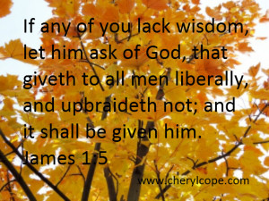 If any of you lack wisdom, let him ask of God, that giveth to all men ...