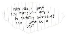 this is so me... socially awkward... cat