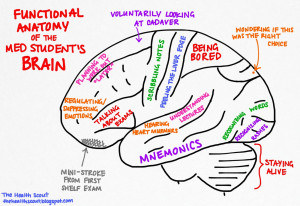 medical student cartoon