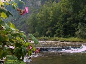 Bible Quotes Natures Beauty ~ Beautiful Nature Photos with Bible ...