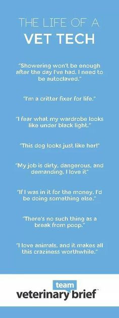 Vet Tech Quotes. QuotesGram