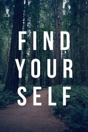 photography nature forest sayings find yourself