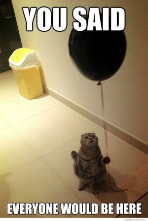 Sad Birthday Cat – You said everyone would be here