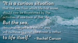 Rachel Carson Quote, Ocean Conservation Quote