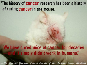 Reasons Why Animal Testing Doesn't Help Humans
