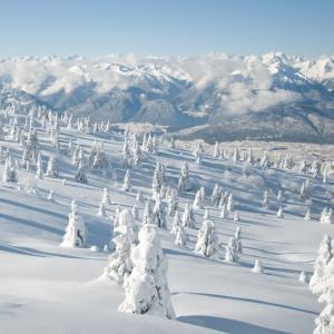 Winter Scenery Ipad Wallpapers