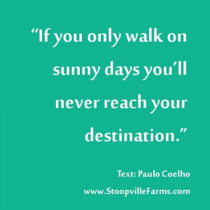 walk daily towards your mission