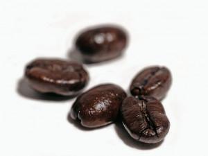 kona coffee bean kona coffee beans are grown in hawaii and are one of ...
