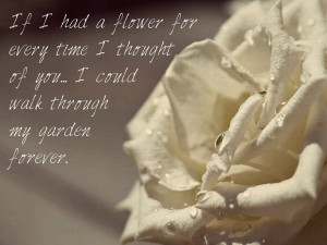 white roses quotes